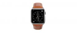Copenhagen - Watch Strap 38 & 40mm - Tan/Space Gray nahrada AW44GTSG1031