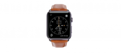 EOL Copenhagen - Watch Strap 42 & 44mm - Tan/Space Gray
